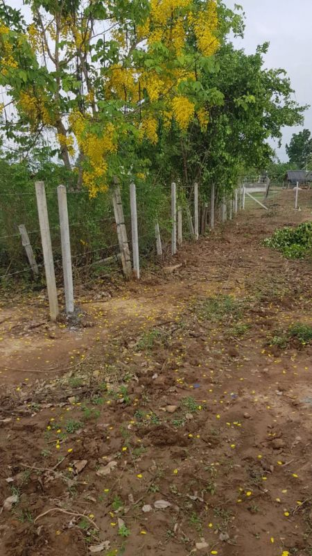 ผลงานติดตั้ง รั้วลวดหนาม ต.ลาดหญ้า อ.เมือง จ.กาญจนบุรี - 10 เม.ย. 64