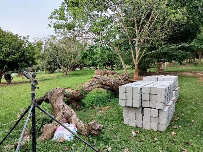จัดส่ง รั้วคาวบอย 3 ชั้น ต.เมืองจัง อ.ภูเพียง จ.น่าน - 22 เม.ย. 64